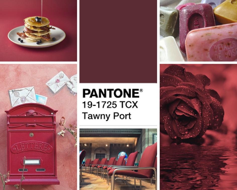 kolory jesieni 2017 tawny port