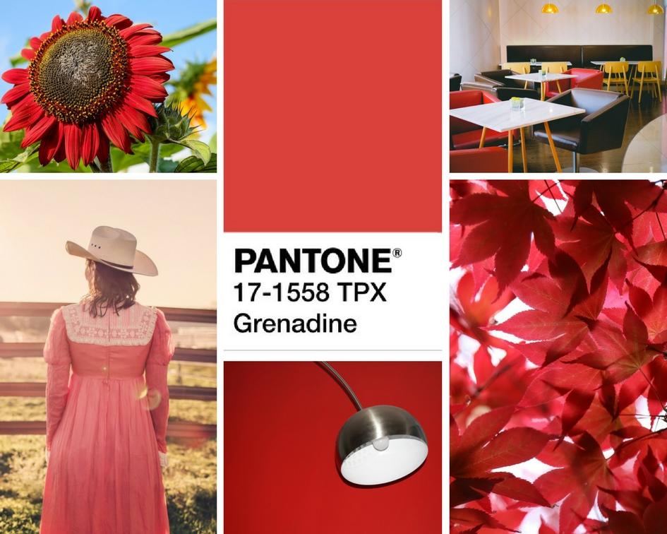 kolory jesienii Grenadine